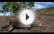 TheHunter Guest Guide -Mule Deer Hunt-