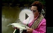 White Bass Fishing, Running of the Bass - Texas Parks and
